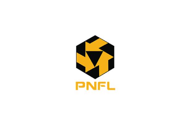 Perunding NFL Sdn. Bhd.